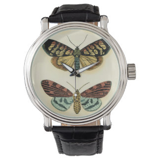 Butterfly Collection by Chariklia Zarris Watch