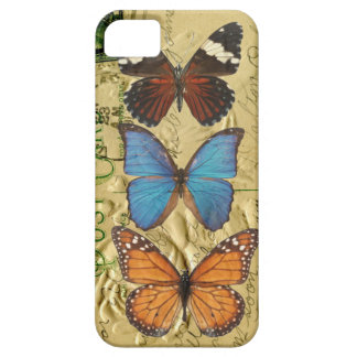 Butterfly collection iPhone 5 covers