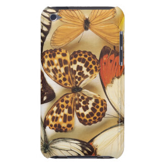 Butterfly collection iPod touch case