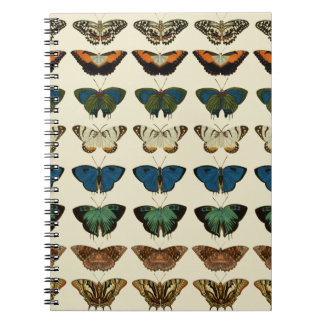 Butterfly Collection Notebook