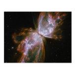 Butterfly Emerges Nebula Postcard