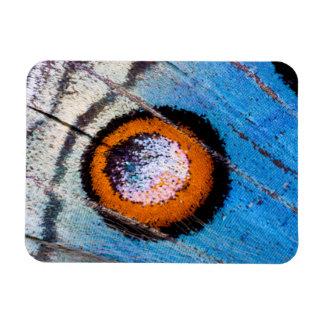 Butterfly false eye close up rectangular photo magnet