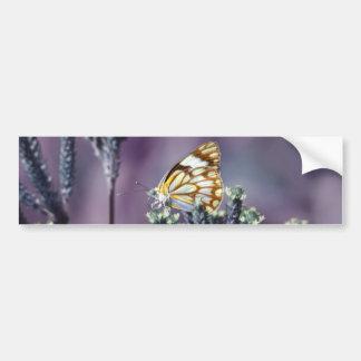 Butterfly Flitter Flutter vintage Bumper Sticker
