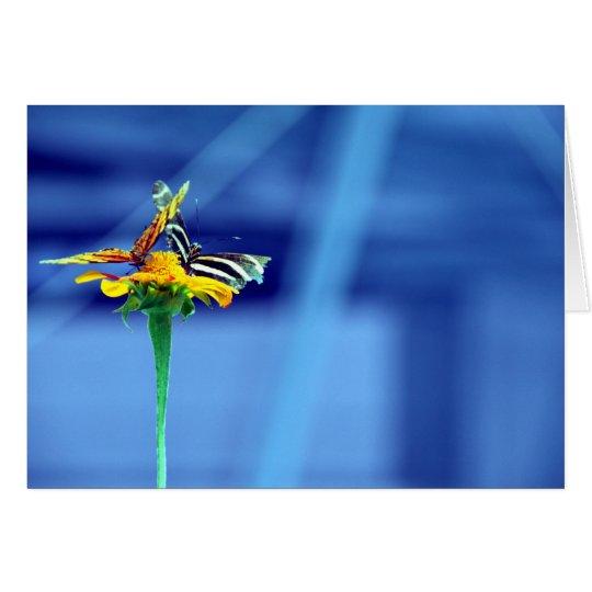 Butterfly Flower Blue Card