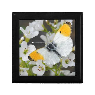 Butterfly & Flowers Small Square Gift Box