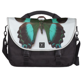 Butterfly found in regions of Asia and India Laptop Shoulder Bag