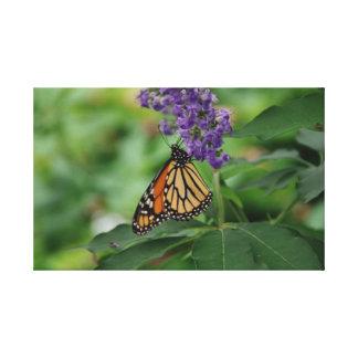 Butterfly Garden Gallery Wrap Canvas