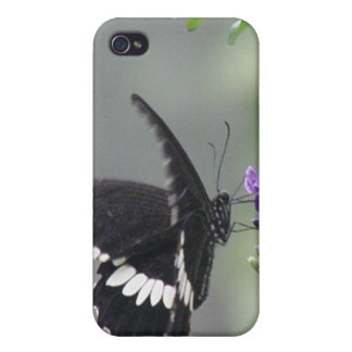 Butterfly Garden iPhone 4 Case