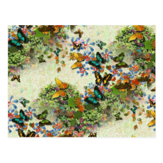 BUTTERFLY GARDEN PC5 Design Postcard