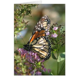 Butterfly Garden Series Greeting Card