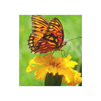 Butterfly garden stretched canvas prints