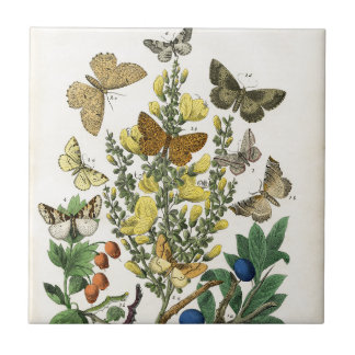 Butterfly Garden Small Square Tile