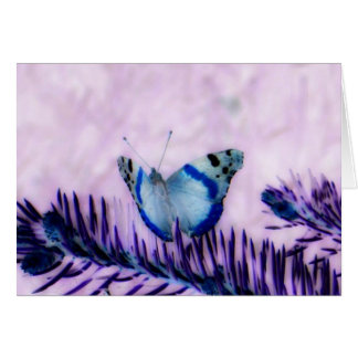 Butterfly Glamour Nature Ensemble Greeting Cards