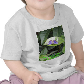 Butterfly - GO GREEN Tshirts