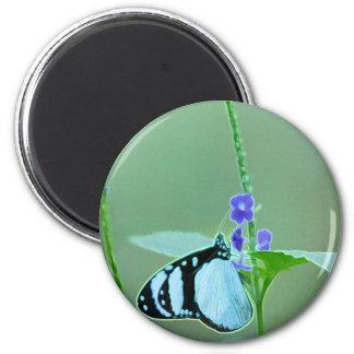 BUTTERFLY GRACE REFRIGERATOR MAGNET