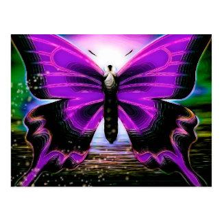 Butterfly Graffitis Postcard