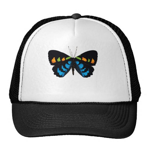 BUTTERFLY GRAPHIC PRINT HAT
