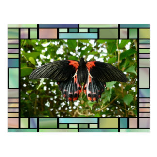 Butterfly Greeting Cards Postcard
