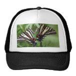 Butterfly Hat