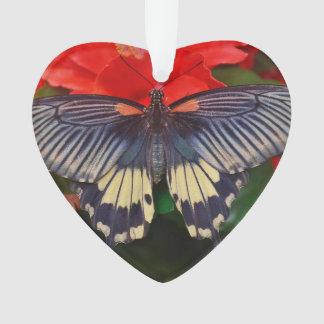 Butterfly Heart Shaped