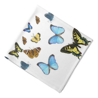 Butterfly image for Bandana