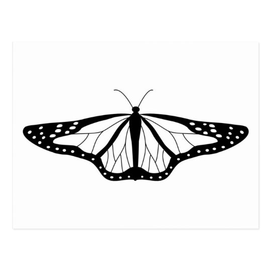 Butterfly Image In Black and White Postcard