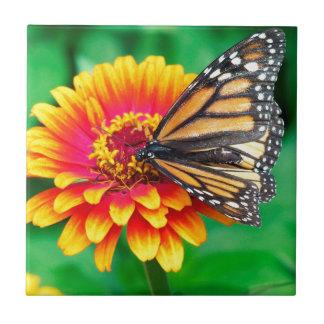 butterfly in a flower tiles