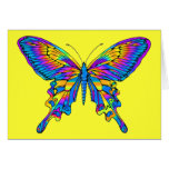 Butterfly in Beautiful Multi-Colour with Blue Cards
