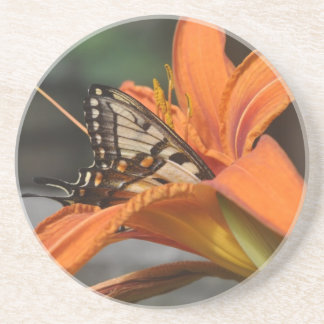 Butterfly in lily coaster