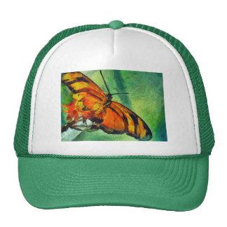 Butterfly in the garden cap