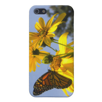 Butterfly in the Sky 2 iPhone 4 case