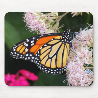 Butterfly Kiss Mouse Pads
