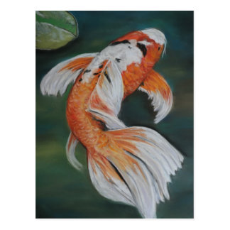 Butterfly Koi Fish Art Postcard