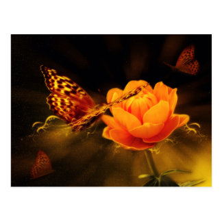 Butterfly Landing on Flower Postcard