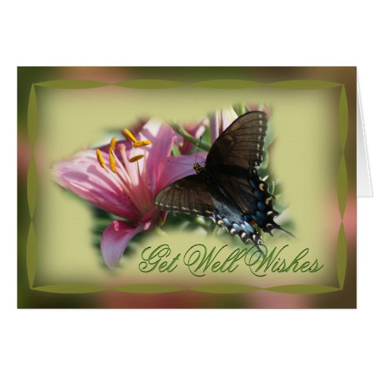 Butterfly & Lily Get Well or other occasion