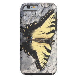 Butterfly Live On Tough iPhone 6 Case