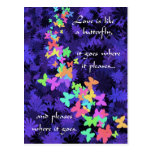 Butterfly Love/Colourful-Quote