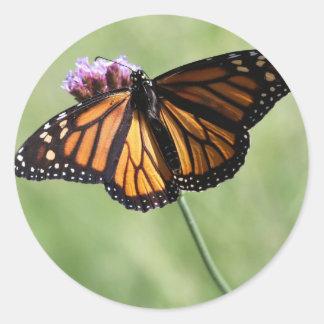 Butterfly Love Round Sticker