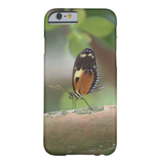 Butterfly Macro Barely There iPhone 6 Case