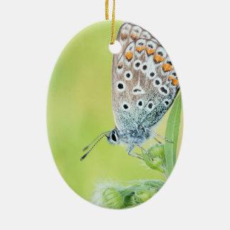 Butterfly macro photo christmas tree ornament