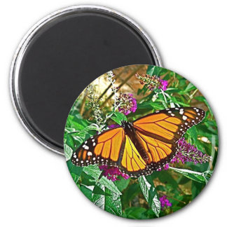 Butterfly Magnet, Monarch Magnet