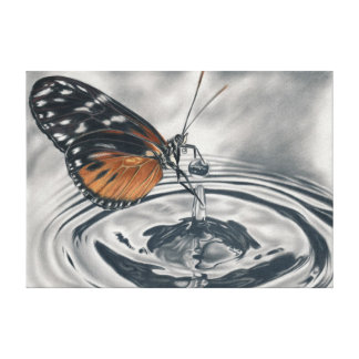 Butterfly meets water drops canvas print