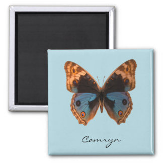 Butterfly Moth Insect Personalized Name Square Magnet