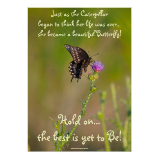 Butterfly Motivational Inspirational Photo Poster