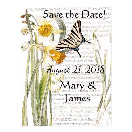 Butterfly Narissus Flowers Save the Date Postcard