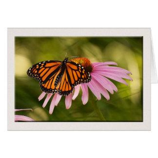Butterfly Note Card, Blank Inside Card