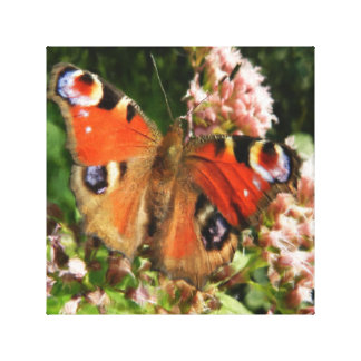 Butterfly Oil Painting Stretched Canvas Print