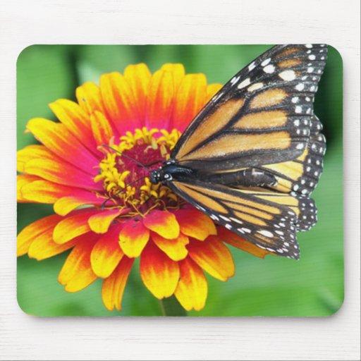 Butterfly on a Flower Mousepad