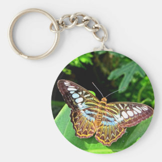 Butterfly on a Leaf Basic Round Button Key Ring
