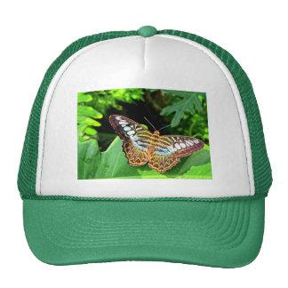 Butterfly on a Leaf Trucker Hat
